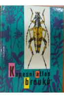 Kapesní atlas brouků - JAVOREK Vladimír