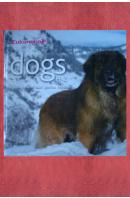 Dogs Hunde. Chiens. Cani. Perros. Honden H - Z - ...autoři různí/ bez autora
