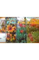 Jaro v zahradě/ Léto v zahradě/ Podzim v zahradě/ Zima v zahradě - ... autoři různí/ bez autora
