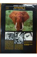 Afrika. Život a smrt zvířat - VÁGNER Josef