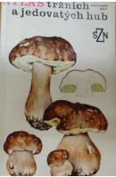 Atlas tržních a jedovatých hub - SMOTLACHA/ MALÝ